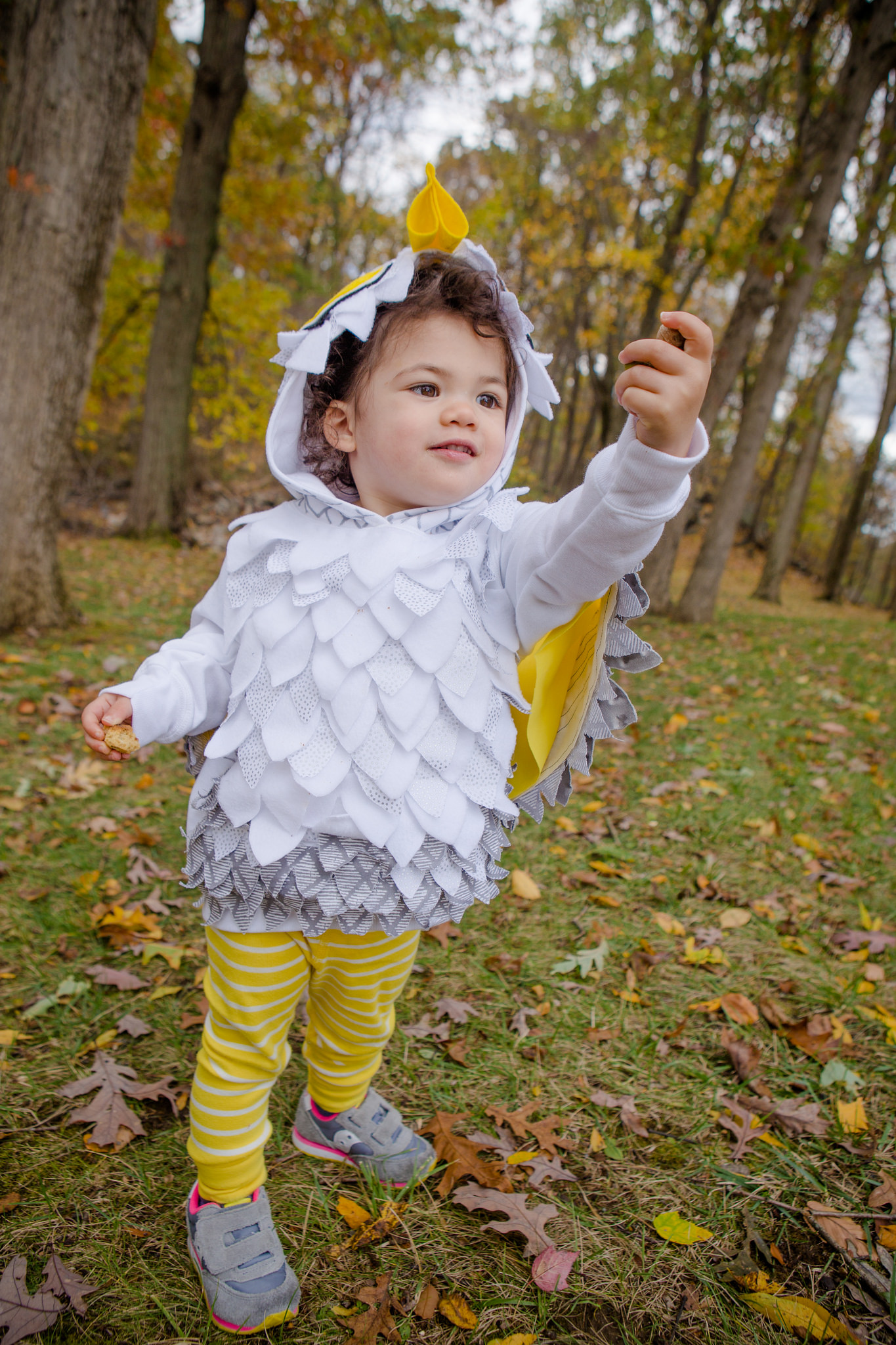 owl costume baby looking for acorns